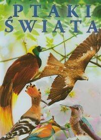 Fenix  Ptaki świata