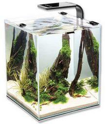 Aquael Shrimp set smart 2 30 black DARMOWA DOSTAWA OD 95 ZŁ!
