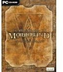 Bethesda Softworks LLC The Elder Scrolls III: Morrowind Game Of The Year ANG (PC) KLUCZ