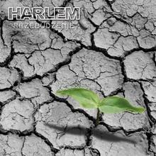 Harlem Przebudzenie