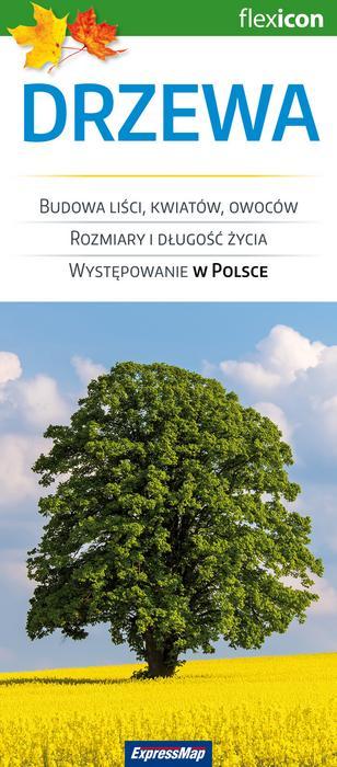 ExpressMap Drzewa - Expressmap