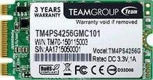 Team Group Lite TM4PS5 256GB TM4PS5256GMC101