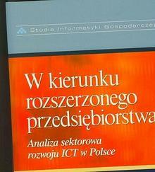 W kierunku rozszerzonego przedsiębiorstwa. Analiza sektorowa rozwoju ICT w Polsce - Difin
