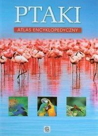 Dragon Ptaki Atlas encyklopedyczny - Anna Przybyłowicz, Przybyłowicz Łukasz