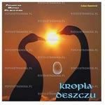 VICTOR 11 Kropla deszczu - cd