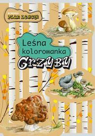 Leśna kolorowanka Grzyby - Katarzyna Kopiec-Sekieta, Goszczyńska Eliza