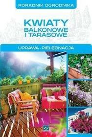 Dragon Kwiaty balkonowe i tarasowe - Michał Mazik