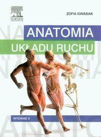 Urban & Partner Anatomia układu ruchu - Zofia Ignasiak