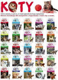 Ringier Axel SpringerPolska Kolekcja Koty LIT-1609