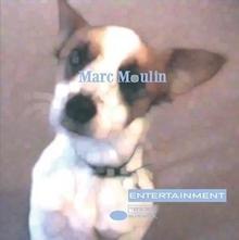 Marc Moulin Entertainment New Version
