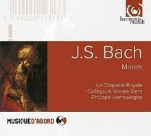 Harmonia Mundi Bach: Motets