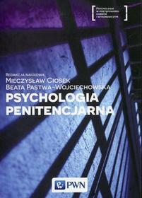 Psychologia penitencjarna - Ciosek Mieczysław, Beata Pastwa-Wojciechowska