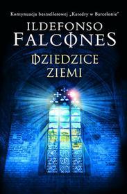 Albatros Dziedzice Ziemi Ildefonso Falcones
