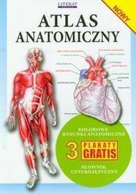 Literat Atlas anatomiczny - Literat