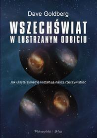 Dave Golberg Wszechświat w lustrzanym odbiciu Jak ukryte symetrie kształtują naszą rzeczywistość e-book)