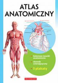 Buchmann / GW Foksal Atlas Anatomiczny - Buchmann