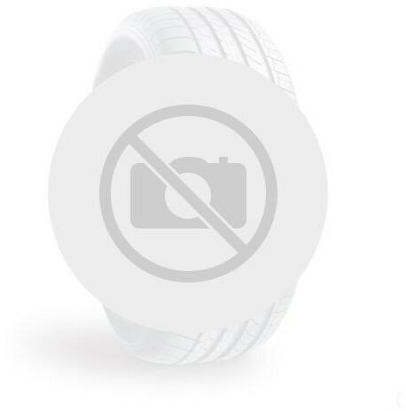 Dębica Frigo 2 205/55 R16 91T