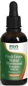 Now Foods NOW Fresh Green Black Walnut ZIELONY orzech 60ml niestrawność, trawienie, odrobaczenie, regulacja poziomu cukru N1028