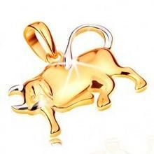 Biżuteria e-shop Zawieszka ze złota 585 - lśniący dwukolorowy symbol znaku zodiaku - BYK