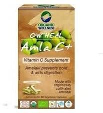 Organic Wellness Amla Witamina C Organic Wellnes Indie 90 Kapsułek 5361-59899_20161009203628