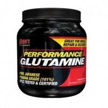 SAN Preformance Glutamine 600 g A362-24545