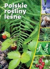 SBMPolskie rośliny leśne - SBM
