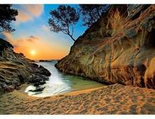 Trefl Wschód słońca, Costa Brava, Hiszpania 27048