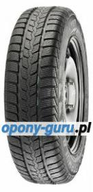 Formula Winter 601 205/55R16 91H 2173900