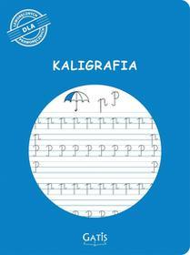 WARTAX Zeszyt do kaligrafii Gatis A4/k16 Zeszyt do kaligrafii Gatis A4/k16 SLOX0023
