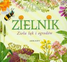 Zielnik Zioła łąk i ogrodów - Henryk Garbarczyk