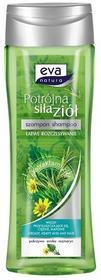 Pollena Eva Szampon pokrzywa Potrójna Siła Ziół EN 250ml EZ-A01-P250-0G3