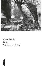 Hajstry Krajobraz bocznych dróg Adam Robiński