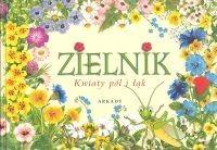 Zielnik. Kwiaty pól i łąk - Agnieszka Rekłajtis-Zawada