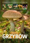 Atlas grzybów - Patrycja Zarawska