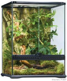 Exo Terra EXOTERRA Terrarium szklane SMALL 45x45x60cm DARMOWA DOSTAWA OD 95 ZŁ!