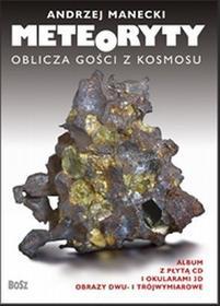 Meteoryty. Oblicza gości z kosmosu - Andrzej Manecki
