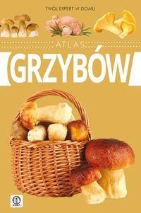 Atlas grzybów - Wiesław Kamiński