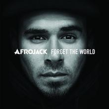 Universal Music Polska Forget The World [Limited Deluxe Edition] CD Afrojack