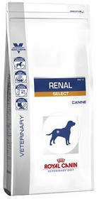 Royal Canin Vet VET DOG Renal Select 2x10kg DWU-PAK
