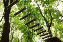 Park linowy dla dwojga - przygoda na wysokości - Olsztyn