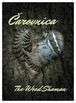 Opinie o Bajkai Miriam Čarovnica/ The Wood Shaman Bajkai Miriam