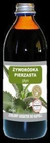 EkaMedica Żyworódka Pierzasta - Płyn 250ml
