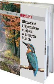 Gazeta Lubuskapraca zbiorowa Niezwykłe i tajemnicze miejsca w naszych lasach
