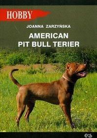 Egros American pit bull terier - Joanna Zarzyńska