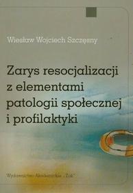 Zarys resocjalizacji z elementami patologii społecznej i profilaktyki - Szczęsny Wiesław Wojciech
