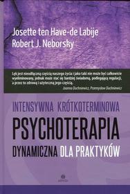 Harmonia Intensywna krótkoterminowa psychoterapia dynamiczna dla praktyków - ten Have-de Labije Josette, Neborsky Robert J.