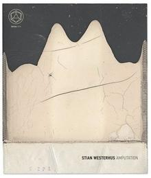 Stian Westerhus Amputation