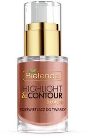 Bielenda Bielenda Professional, Highlight & Contour, rozświetlacz do twarzy, Bronze, 15 ml