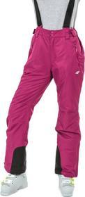 4F Spodnie narciarskie damskie SPDN001 (czarne) SPDN001 T4Z14