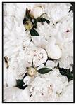 myscandi PROMOCJA Plakat botaniczny Białe Piwonie